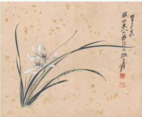 ZhangDaQianOrchid